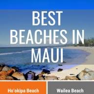 Best Beaches in Maui Infographic