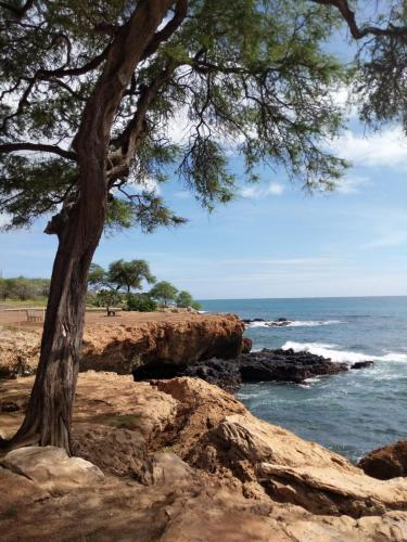 Electric Beach Hawaii